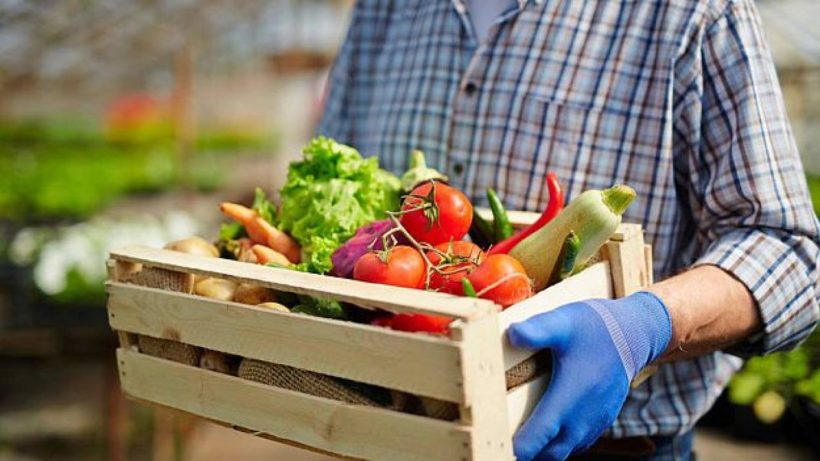 Simplicity = Sustainability for Subsistence Farmers