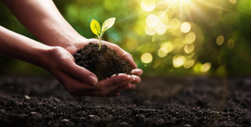 The Future of Organic Farming is Found in the Soil